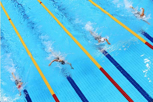Nadadores en piscina olímpica
